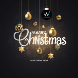 Merry Christmas from Web Idilio